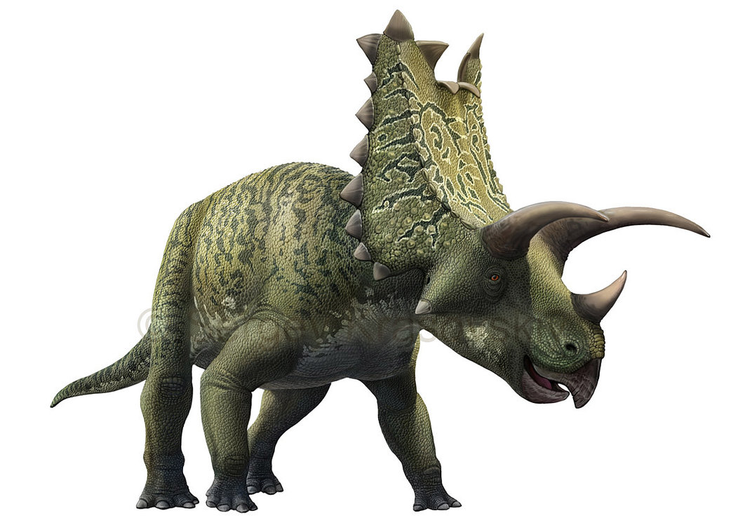 Pentaceratops by Sergey Krasovskiy