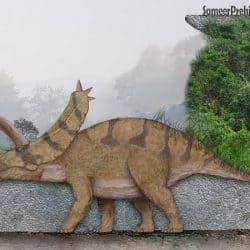 Pentaceratops by SameerPrehistorica