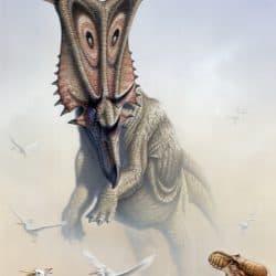 Chasmosaurus by Fabio Pastori