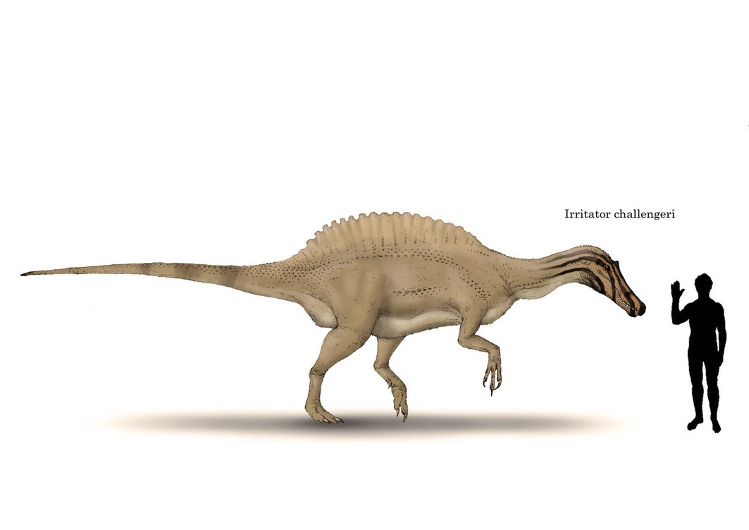 irritator facts and pictures