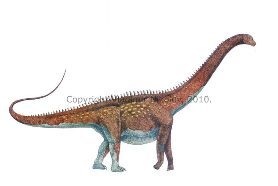 Alamosaurus by Vladimir Nikolov