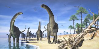 Alamosaurus by Jk