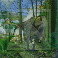 Sinraptor by Vladimir Nikolov