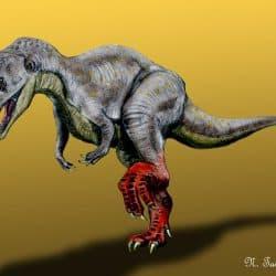 Sinraptor by Nobu Tamura