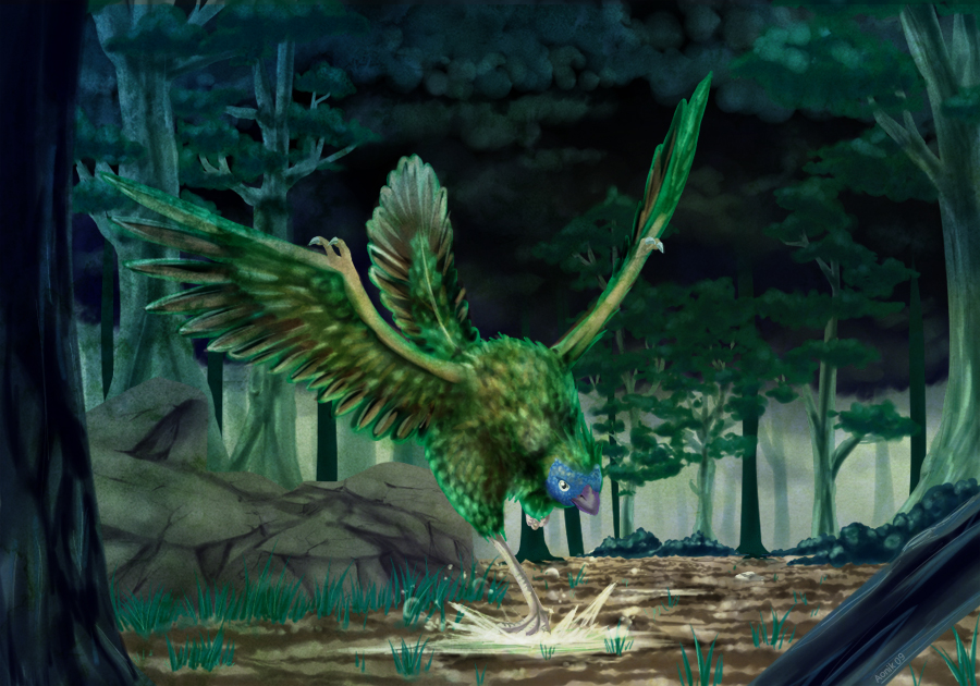Archaeopteryx by Aonik