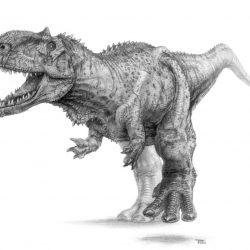 Rajasaurus by Seth Stephenson
