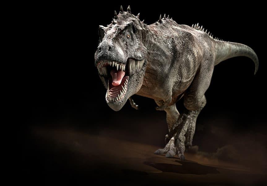 Gc7nq3k Dinosaur Series Tyrannosaurus Aka T Rex