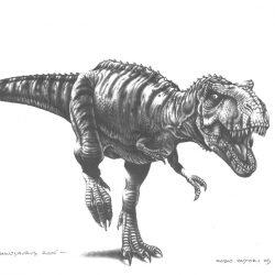 Tyrannosaurus by Fabio Pastori