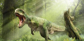 Giganotosaurus by Damir