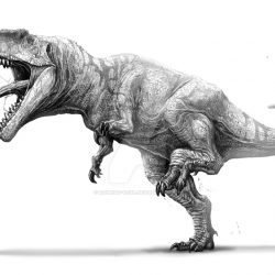 Giganotosaurus by Rodrigo Vega