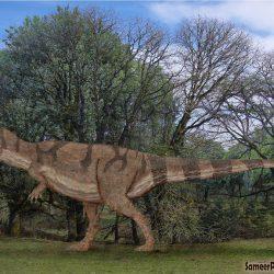 Giganotosaurus by SameerPrehistoricarica