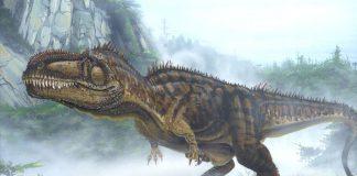 Giganotosaurus by Todd Marshall