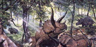 Triceratops by Mark Hallett