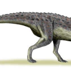 Carnotaurus by Nobu Tamura