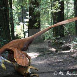 Deinonychus by Nobu Tamura