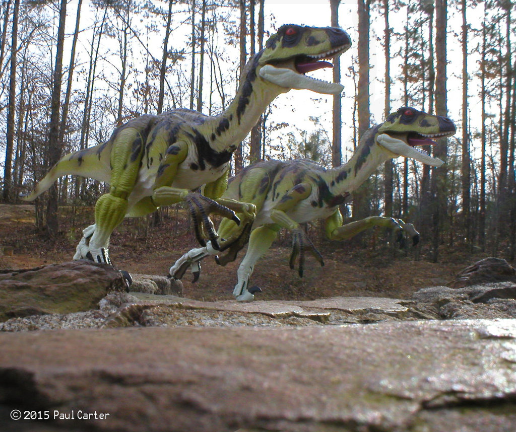 Deinonychus by Paul Carter
