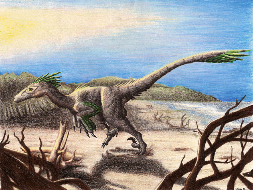 Deinonychus by Emily Willoughby