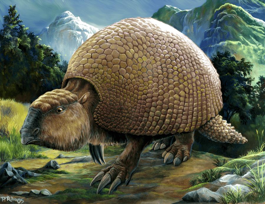 Glyptodon by Pavel