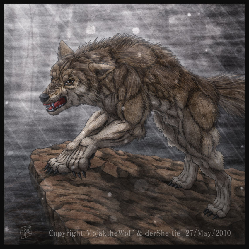 Dire Wolf Facts And Pictures