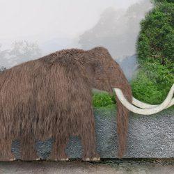 1054_mammuthus (woolly mammoth)_sameerprehistorica