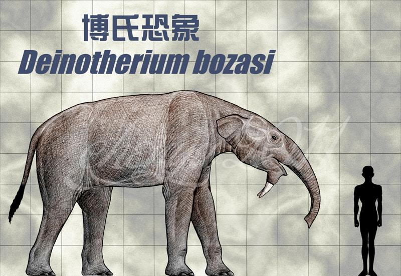 Deinotherium by Chen Yu