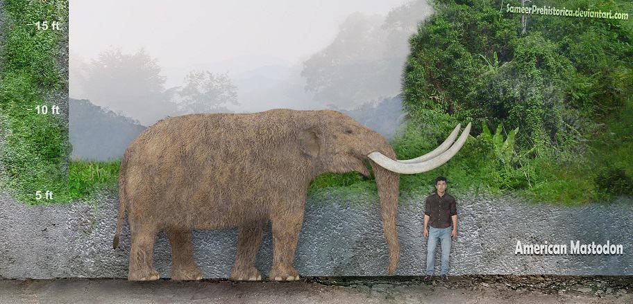 Mammut (Mastodon) by SameerPrehistorica