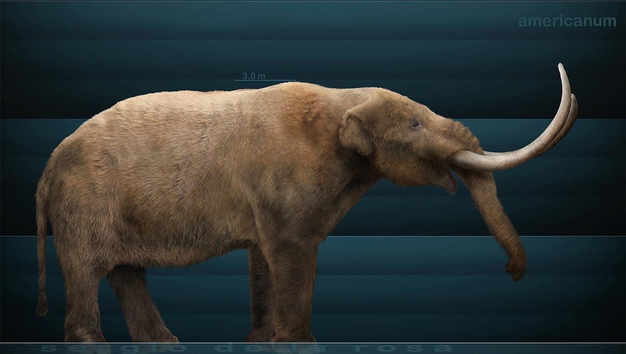 Mammut (Mastodon) by Sergio De la Rosa Martinez