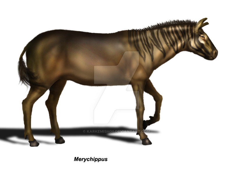 Merychippus by Eduardo