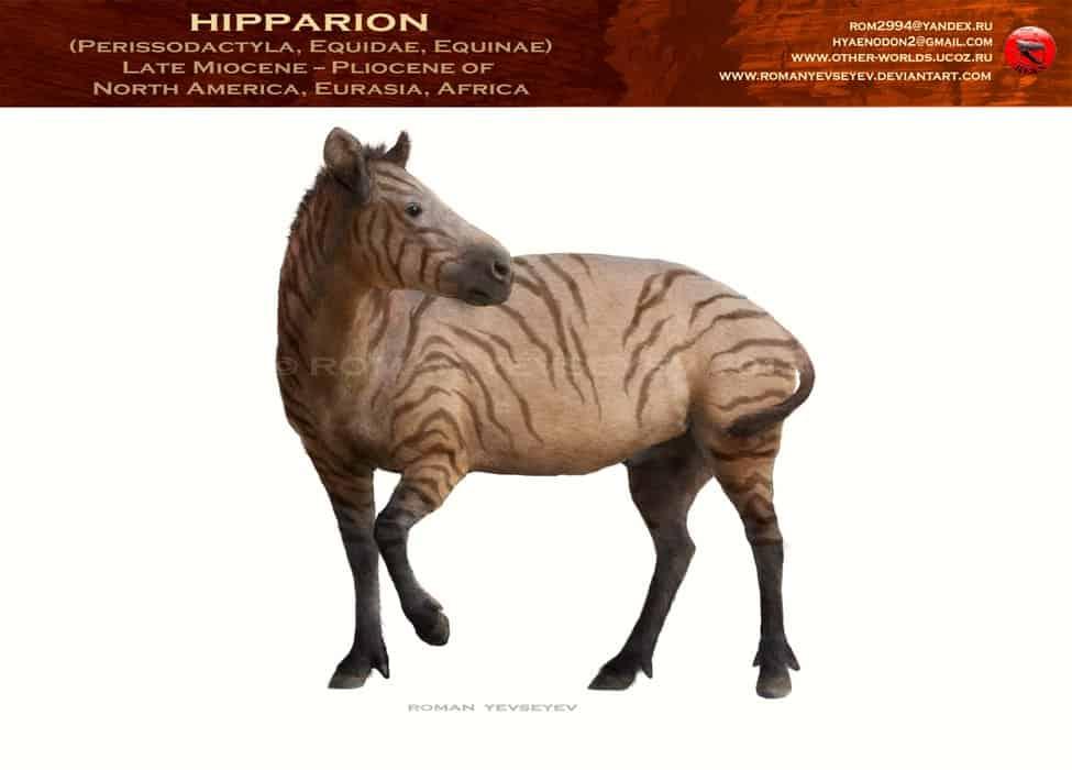 Hipparion by Roman Yevseyev
