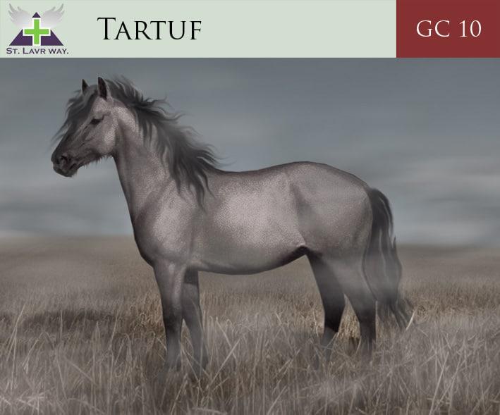 Tarpan by Olga
