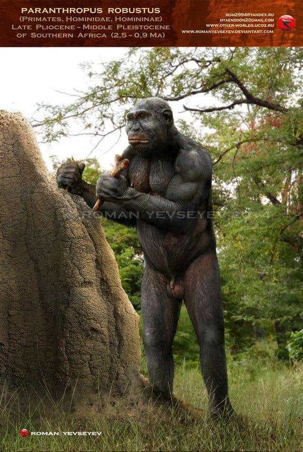 Paranthropus by Roman Yevseyev