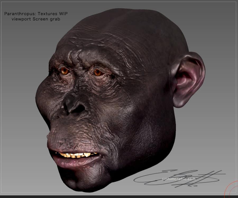 Paranthropus by Eric Barnett