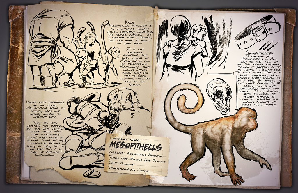 Mesopithecus by Kevin