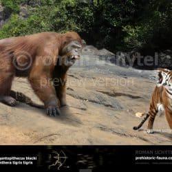 1136_gigantopithecus_roman_uchytel