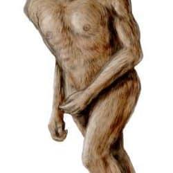 1140_australopithecus_nobu_tamura