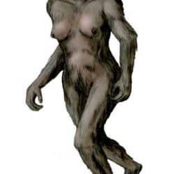 1141_australopithecus_nobu_tamura