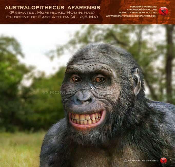 Australopithecus by Roman Yevseyev
