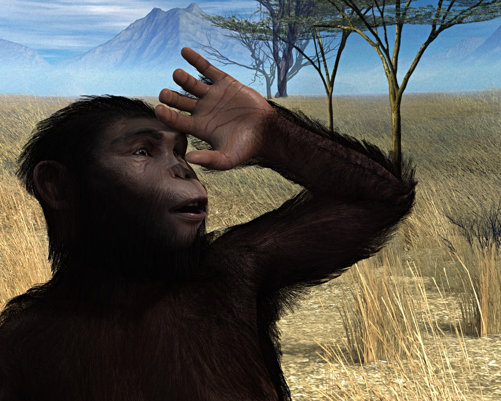 Australopithecus by Scott Livingston