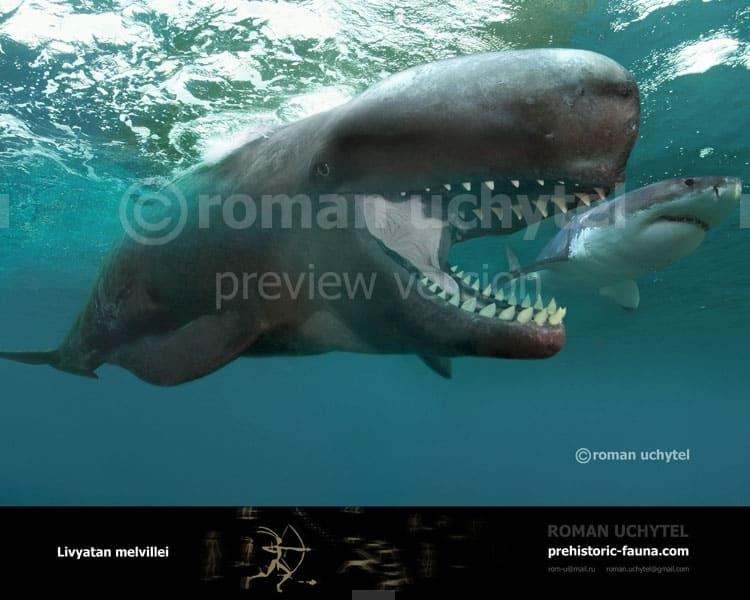 Leviathan (Livyatan) by Roman Uchytel