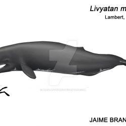 1155_leviathan (livyatan)_jaime_bran