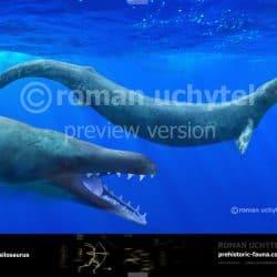 1164_basilosaurus_roman_uchytel