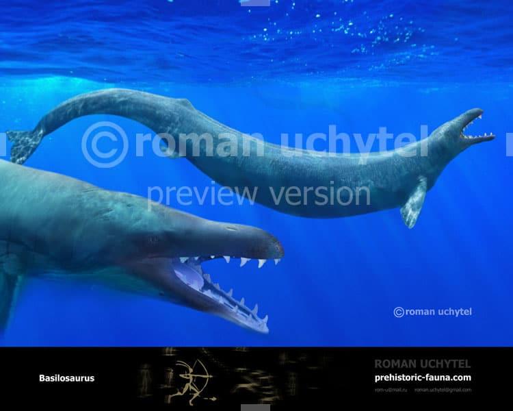 Basilosaurus by Roman Uchytel