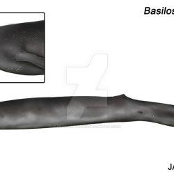 1168_basilosaurus_jaime_bran