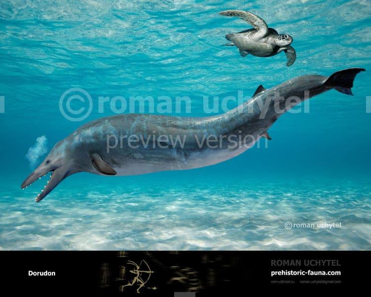 Dorudon by Roman Uchytel