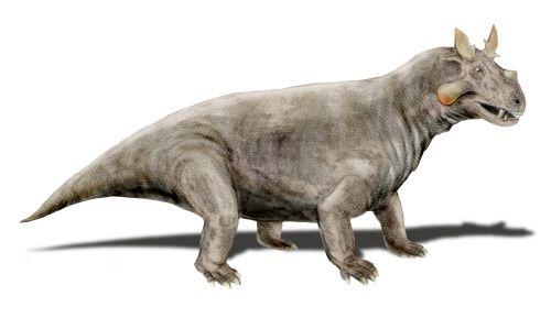 Estemmenosuchus by Nobu Tamura