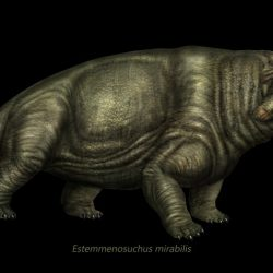1278_estemmenosuchus_eduardo