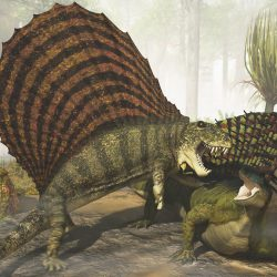 1313_edaphosaurus_james_kuether
