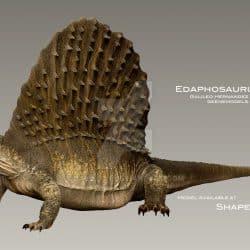 1316_edaphosaurus_galileo_nunez