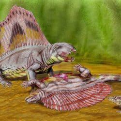 1320_edaphosaurus_dmitry_bogdanov