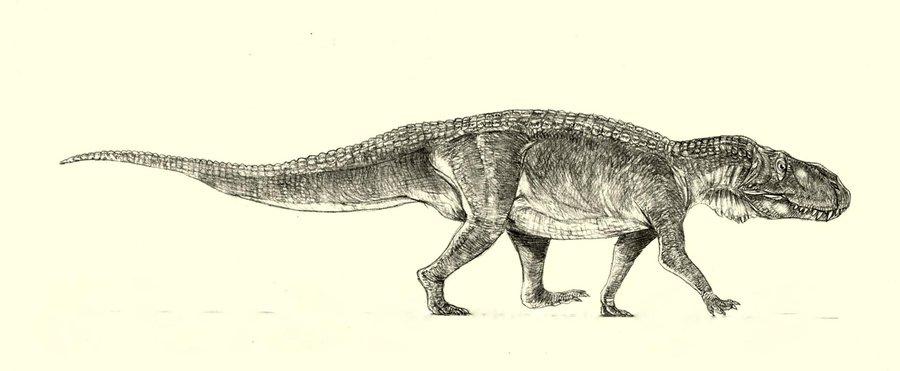 Postosuchus by Jakub